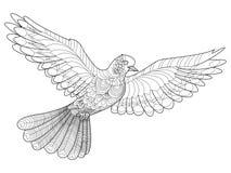 Vector del colorante de la paloma para los adultos Imagenes de archivo