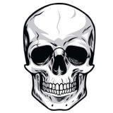 Vector del cráneo stock de ilustración