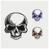 Vector del cráneo Fotos de archivo libres de regalías
