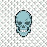 Vector del cráneo, flor del lirio del fondo Fotografía de archivo libre de regalías