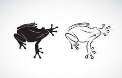 Vector del diseño de la rana en el fondo blanco anfibio Animal Franco Imagen de archivo libre de regalías