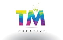 Vector del diseño de los triángulos de TM T M Colorful Letter Origami Fotografía de archivo