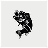 Vector del ejemplo de pescados Imágenes de archivo libres de regalías