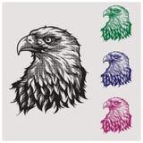 vector del ejemplo del águila principal Imágenes de archivo libres de regalías