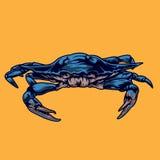 Vector del ejemplo del cangrejo Imagen de archivo libre de regalías