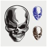 Vector del ejemplo del cráneo Foto de archivo libre de regalías