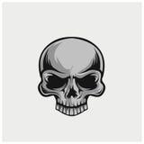 Vector del ejemplo del cráneo Foto de archivo