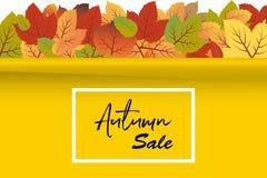 Vector del fondo de la bandera de Autumn Sale con las hojas anaranjadas y verdes de la caída con la pared amarilla stock de ilustración