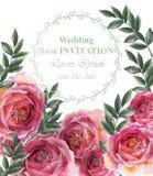 Vector del fondo de las rosas del vintage Decoraciones retras de la tarjeta floral ilustración del vector