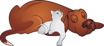 Vector del gato y del perro Foto de archivo