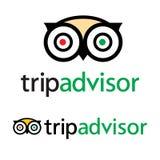Vector del icono del logotipo de Tripadvisor - servicio popular con el grado de hoteles y de atracciones para el viaje ilustración del vector
