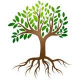 Vector del logotipo de las raíces del árbol libre illustration