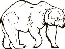 Vector del oso blackbear libre illustration