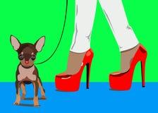 Vector del perro pequeño pie de las mujeres del dibujo Imágenes de archivo libres de regalías