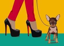 Vector del perro pequeño pie de las mujeres del dibujo Imagen de archivo libre de regalías