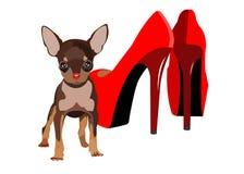 Vector del perro pequeño pie de las mujeres del dibujo Imagen de archivo