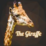 Vector del polígono de la jirafa Foto de archivo libre de regalías