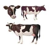 Vector del sistema de la vaca ilustración del vector