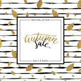 Vector del texto de la venta del otoño en fondo rayado inconsútil Imágenes de archivo libres de regalías