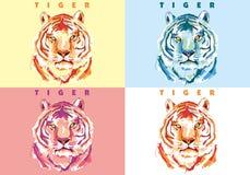 vector del tigre Fotos de archivo