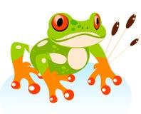 Vector den nette Karikatur-freundlichen Frosch, bunt Lizenzfreie Stockbilder