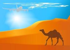 Vector desert,camel,jet. Royalty Free Stock Images