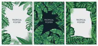 Vector design cards and banners with exotic leaves, tropical printable set. Design of a poster for interior decoration stock illustration