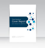 Vector design for Cover Report Brochure Flyer Poster in A4 size. Vector design for Cover Report Brochure Flyer Poster Brochure in A4 size Royalty Free Stock Photos