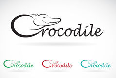 Vector design crocodile is text Stock Photos