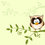 Vector design with cute owl Stock Image