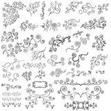 Vector Design Element Vines Set. A collection of many ornamental design vine elements stock illustration