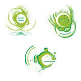 Art logo. Vector design elements in green Royalty Free Stock Image