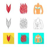 Isolated object of fiber and muscular icon. Set of fiber and body stock symbol for web. Vector design of fiber and muscular symbol. Collection of fiber and body stock illustration