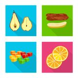Vector design of fruit and dried  icon. Collection of fruit and food  vector icon for stock. Vector illustration of fruit and dried  symbol. Set of fruit and royalty free illustration