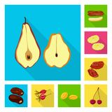Isolated object of fruit and dried  sign. Collection of fruit and food  stock symbol for web. Vector design of fruit and dried  logo. Set of fruit and food vector illustration
