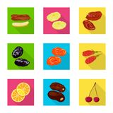 Isolated object of fruit and dried  sign. Collection of fruit and food  vector icon for stock. Vector design of fruit and dried  logo. Set of fruit and food vector illustration