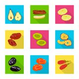 Vector design of fruit and dried  logo. Set of fruit and food  stock vector illustration. Vector illustration of fruit and dried  icon. Collection of fruit and stock illustration