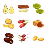 Isolated object of fruit and dried symbol. Set of fruit and food vector icon for stock. Vector design of fruit and dried sign. Collection of fruit and food vector illustration