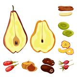 Vector design of fruit and dried  sign. Collection of fruit and food  stock symbol for web. Vector illustration of fruit and dried  logo. Set of fruit and food vector illustration