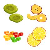 Isolated object of fruit and dried  icon. Collection of fruit and food  vector icon for stock. Vector design of fruit and dried  symbol. Set of fruit and food vector illustration
