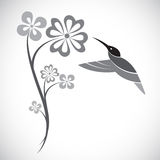 Vector design of hummingbird and flowers Royalty Free Stock Photos