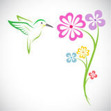 Vector design of hummingbird and flowers Royalty Free Stock Image