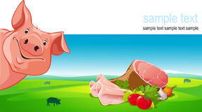 Vector design with pig, ham, pork, vegetable Stock Photos