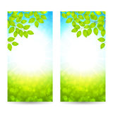 Vector design of the spring banners with leaves and sun vector illustration