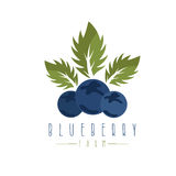 Vector design template of the blueberry Stock Images