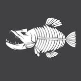 Vector design template tropical fish skeleton. Vector design template of aggressive tropical fish skeleton Royalty Free Stock Image