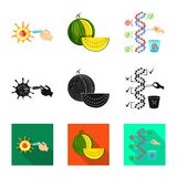 Vector design of test and synthetic sign. Collection of test and laboratory vector icon for stock. Vector illustration of test and synthetic logo. Set of test stock illustration