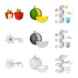 Vector design of test and synthetic sign. Collection of test and laboratory stock symbol for web. Vector illustration of test and synthetic logo. Set of test stock illustration