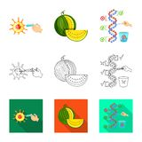 Vector design of test and synthetic symbol. Set of test and laboratory vector icon for stock. Vector illustration of test and synthetic sign. Collection of test royalty free illustration