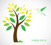 Vector design of trees and hummingbird Royalty Free Stock Photography